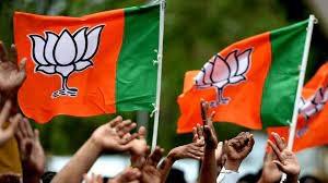 BJP1_1H x W: